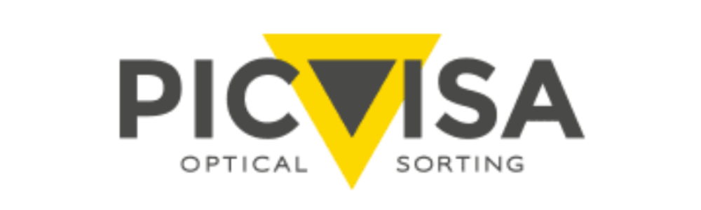 picvisa logo