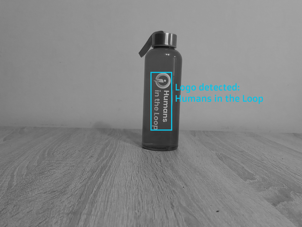 HITL Water Bottle logo detection post-annotation example