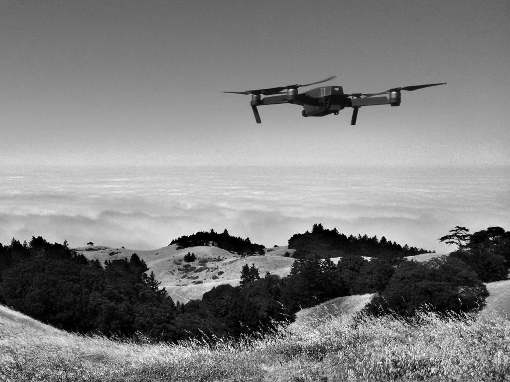 Drone Segmentation pre labeling example