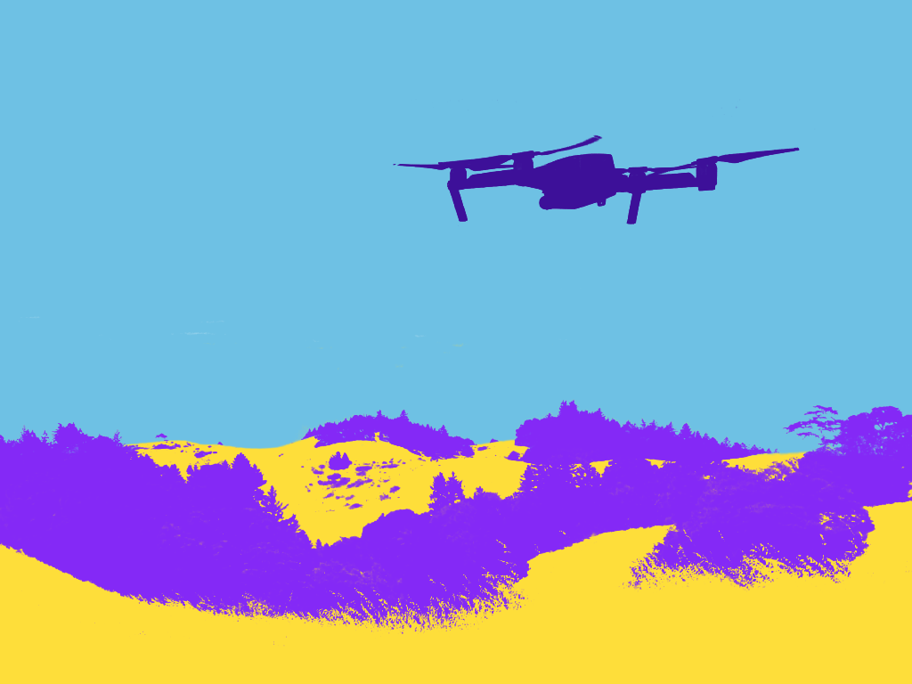 Drone Segmentation post labeling example