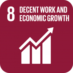 United Nations Sustainable Development Goal: Decent work and economic growth image